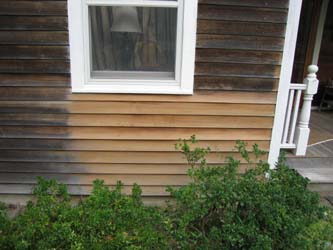 Removing Severe Mildew Linseed Oil Paint Case Study